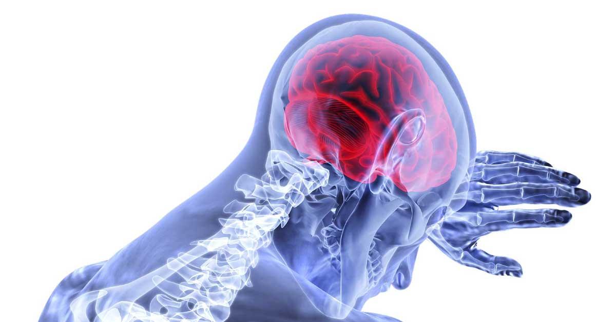 Healthy-brain-post